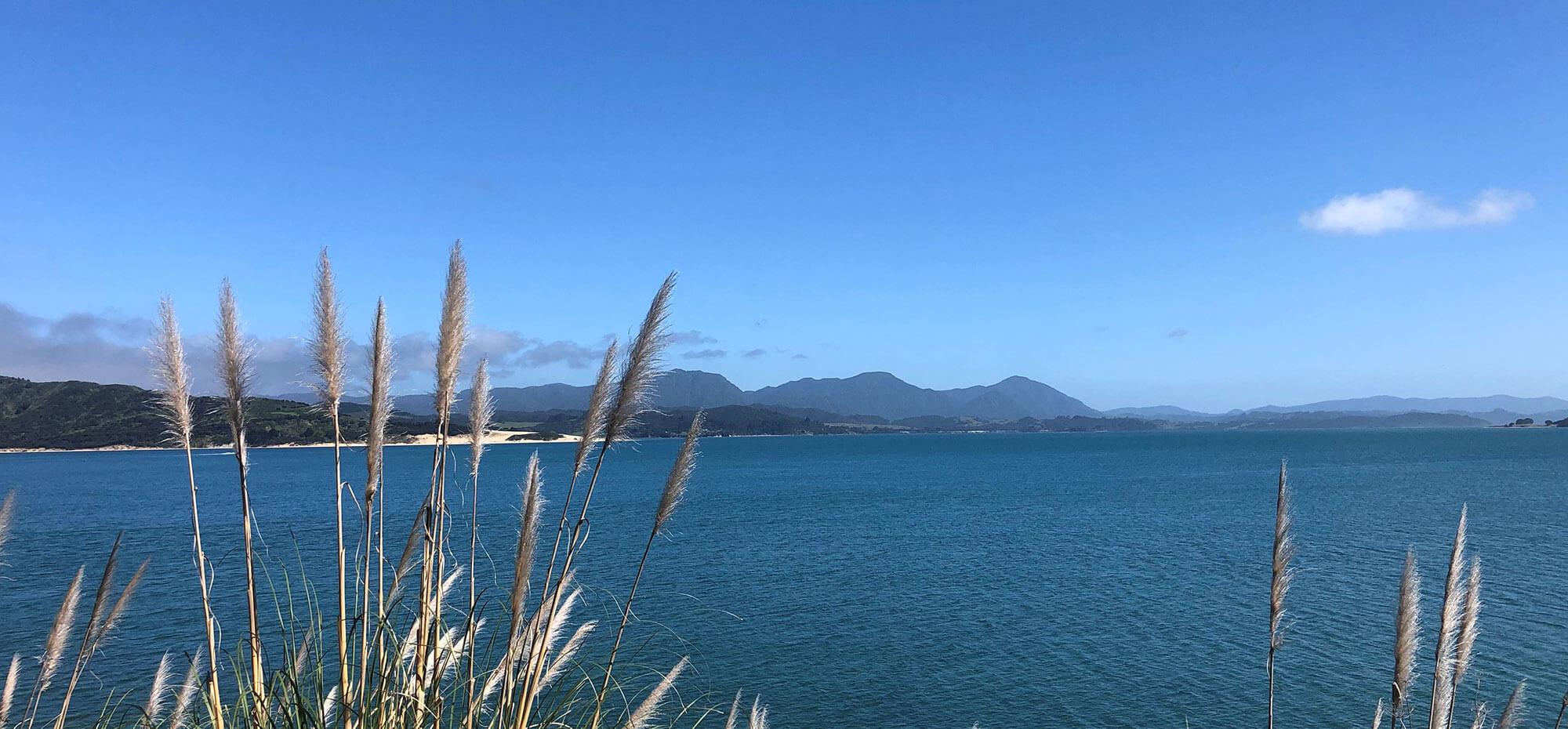 Inspiring Leaders Making a Difference in Te Tai Tokerau